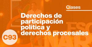Derechos de participación política y derechos procesales